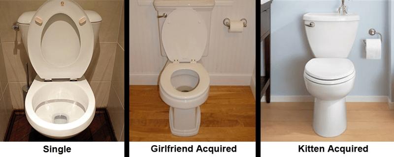 single girlfriend toilet dating - 8799856384
