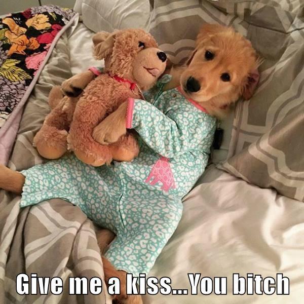 Give me a kiss...You bitch