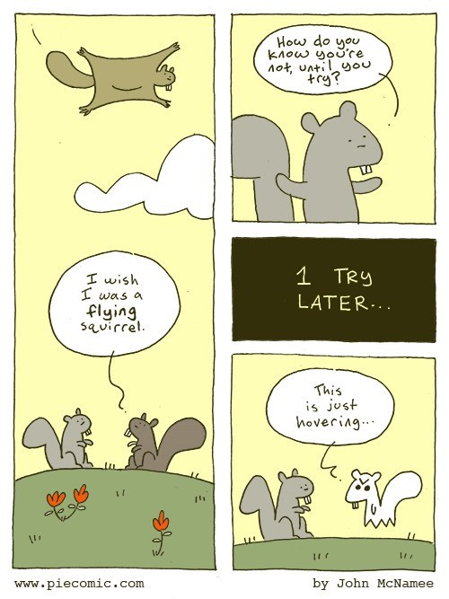 web-comics-funny-squirrel-tries-to-fly-failure-ghost-results