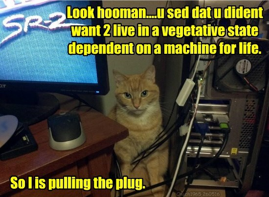 It wuz ur wishes hooman...