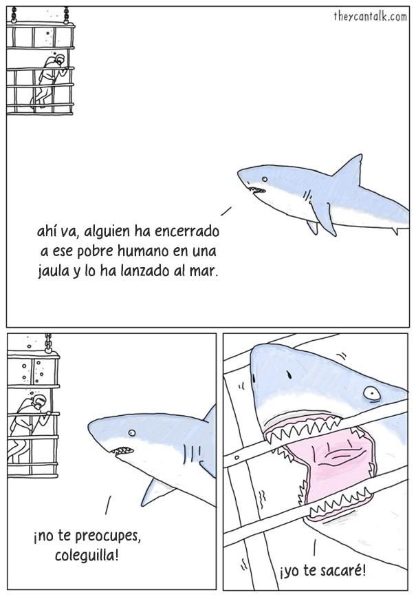 animales hablan