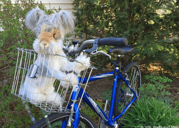 Bicycle - 2016 Wal?and Mell-