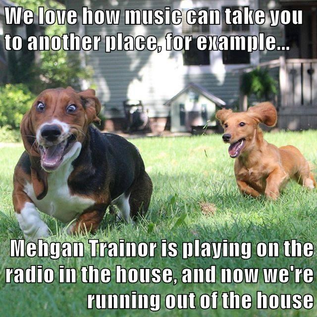 We love how music can take you to another place, for example...  Mehgan Trainor is playing on the radio in the house, and now we're running out of the house
