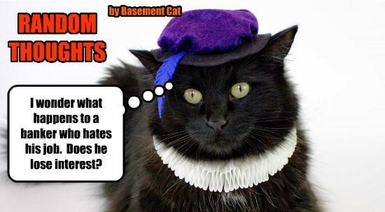 bank thoughts random caption Cats - 8800323328