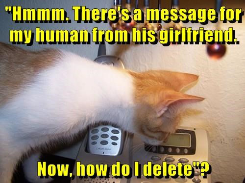 """Hmmm. There's a message for my human from his girlfriend. Now, how do I delete""?"