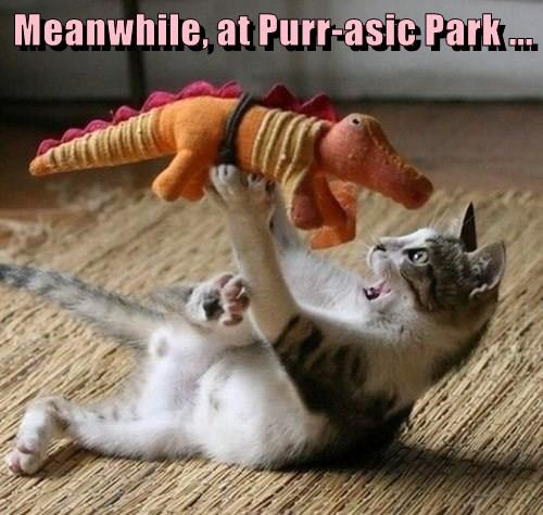 Plush,purr,dinosaur,caption,jurassic park,Cats