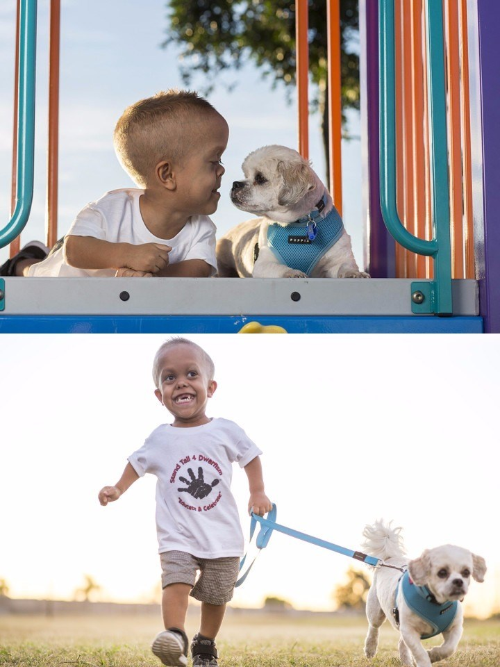 boy and dog both have dwarfism so happy to find eachother