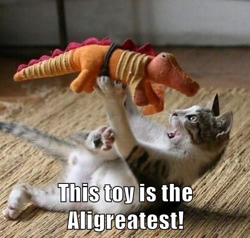 This toy is the Aligreatest!