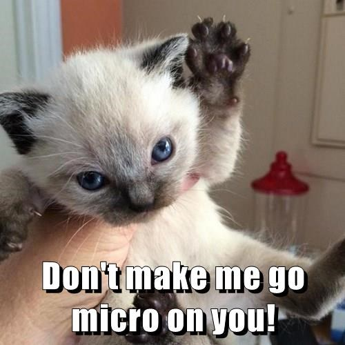 Don't make me go micro on you!