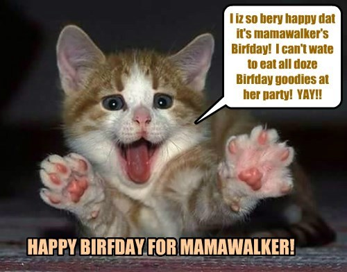 Happy Happy Birfday for teh wonnerful mamawalker! I hope she has lots of prezzies and cakes and stuff like dat!