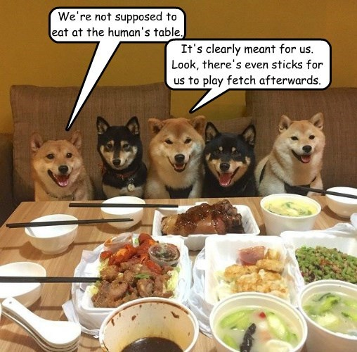 It's clearly meant for us. Look, there's even sticks for us to play fetch afterwards. We're not supposed to eat at the human's table.