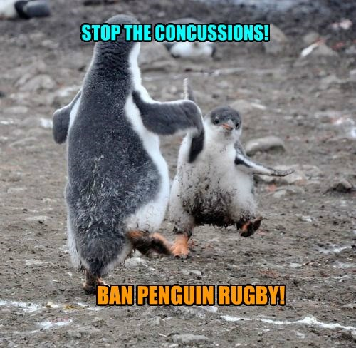STOP THE CONCUSSIONS!