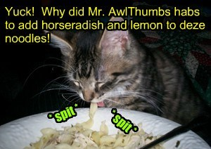 Another satisfied customer of Mr. AllThumbs' fare.. NOT!! Kandi iz nawt happy wiff her meal..