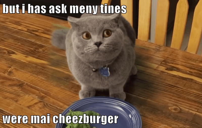 animals cheezburger diet prince michael caption Cats - 8800696576