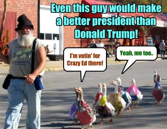 Some voters have just found a superior write-in candidate for President!