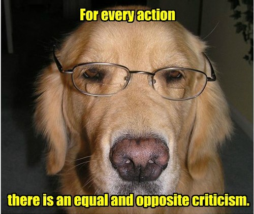 dogs wisdom action caption