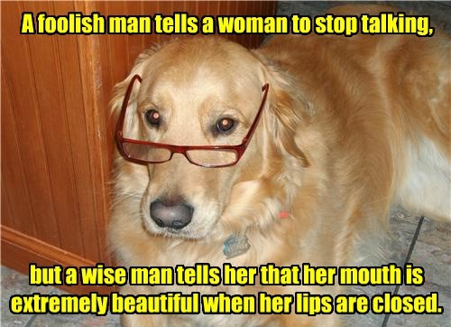 dogs man choose wisely wonder woman talking foolish mouth closed caption stop beautiful - 8800749568