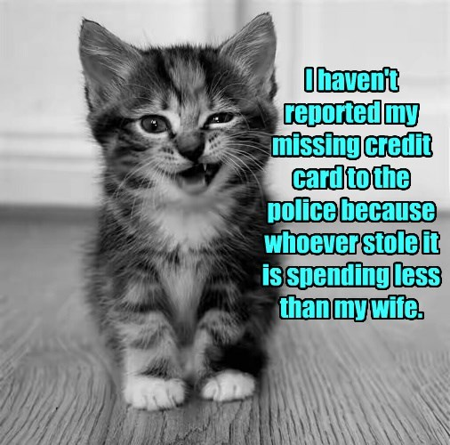 I haven't reported my missing credit card to the police because whoever stole it is spending less than my wife.
