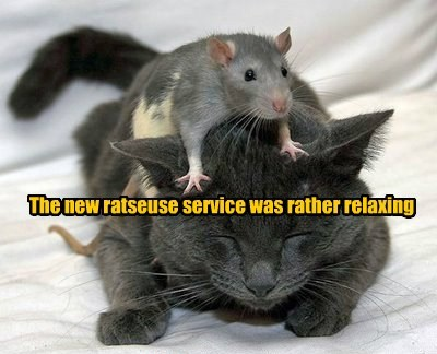 The new ratseuse service was rather relaxing
