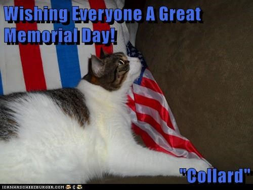 "Wishing Everyone A Great Memorial Day!  ""Collard"""