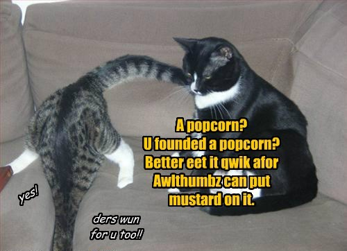 A popcorn? U founded a popcorn? Better eet it qwik afor Awlthumbz can put mustard on it.