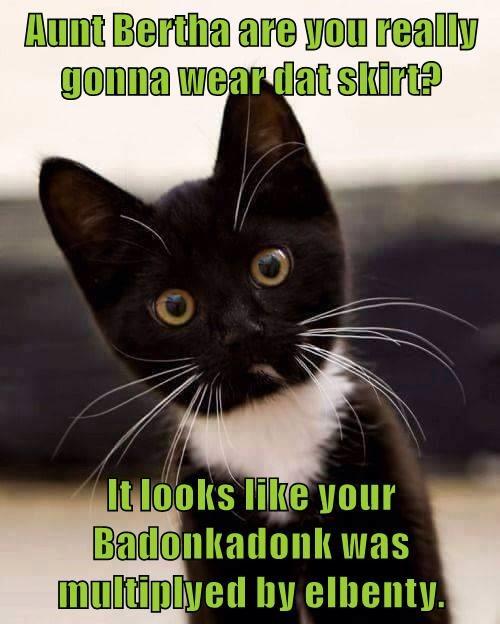 animals cat bertha elebenty wear aunt multiplied badonkadonk caption skirt - 8801049600