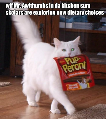 wif Mr. Awlthumbs in da kitchen sum skolars are exploring new dietary choices