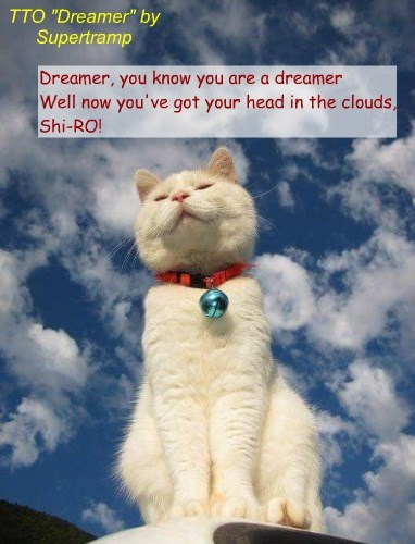 """DreamCat"" (TTO ""Dreamer"" by Supertramp)"