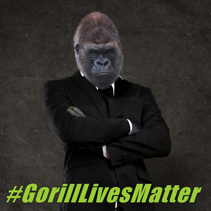 #GorillLivesMatter