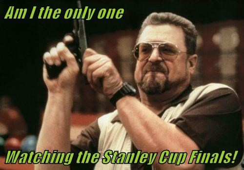 Am I the only one   Watching the Stanley Cup Finals!