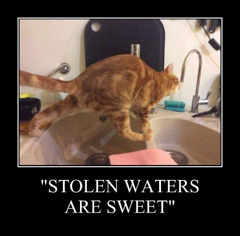 """""""STOLEN WATERS ARE SWEET"""""""