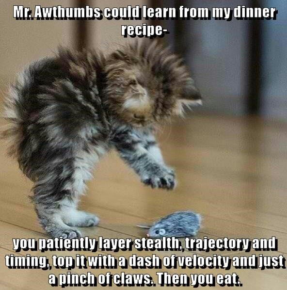 Mr. Awthumbs could learn from my dinner recipe-  you patiently layer stealth, trajectory and timing, top it with a dash of velocity and just a pinch of claws. Then you eat.