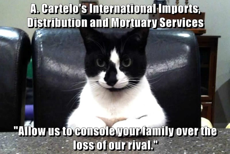"A. Cartelo's International Imports, Distribution and Mortuary Services  ""Allow us to console your family over the loss of our rival."""