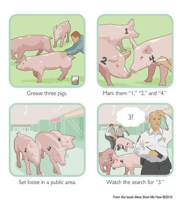 bad idea pig prank store - 8801746944