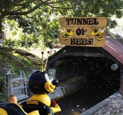 parenting bees children - 8801750528