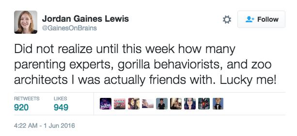 twitter,zoo,parenting,gorilla