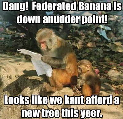 Dang!  Federated Banana is down anudder point!
