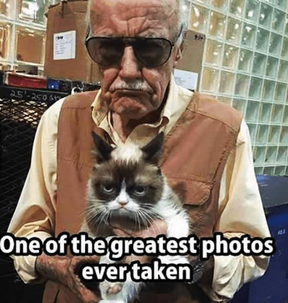 funny-marvel-comics-legend-stan-lee-with-grumpy-cat
