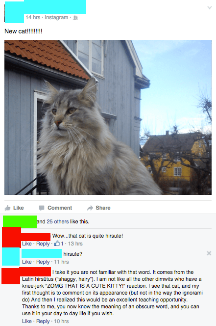 failbook,words,facebook,Cats