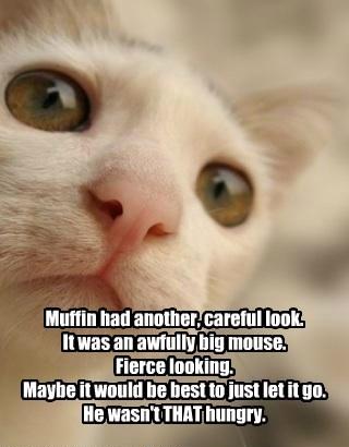 cat fierce careful looking go big caption let mouse - 8802574592