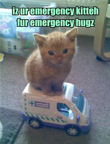 :Nd anyfing kin be a 'mergency!