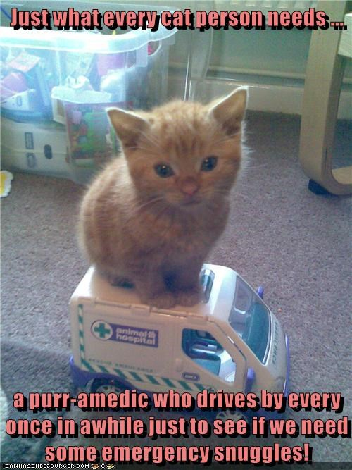 emergency,snuggles,kitten,drives,purr-amedic,caption,paramedic