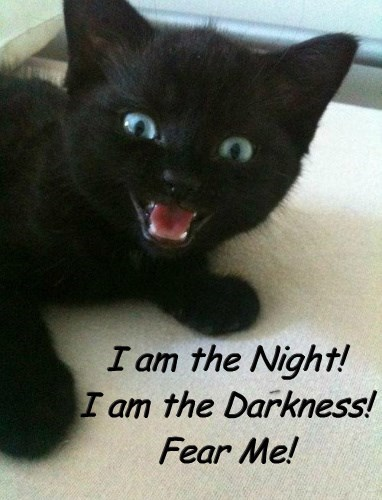 I am the Night! I am the Darkness! Fear Me!