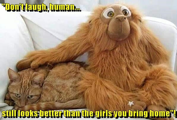 """Don't laugh, human...   still looks better than the girls you bring home""!"