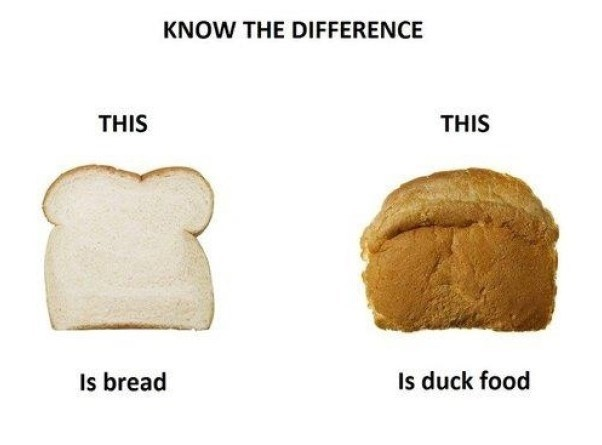 image bread advice Knowledge is Power