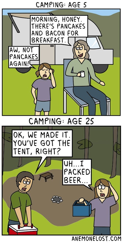 truth-about-getting-older-and-camping-web-comics