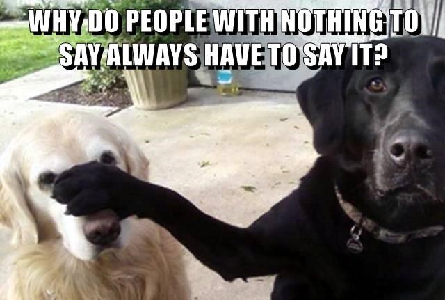 animals dogs say speak caption - 8803152384