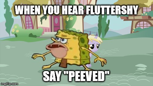 SpongeBob SquarePants flutter brutter dinky doo spongegar fluttershy - 8803274240