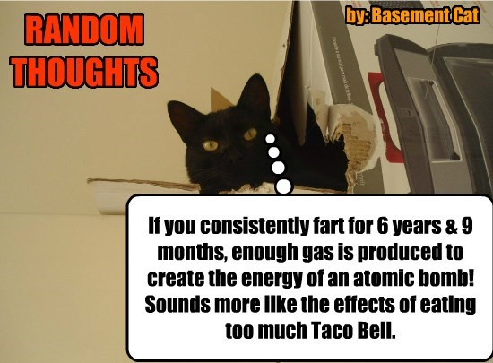 If you consistently fart for 6 years & 9 months, enough gas is produced to create the energy of an atomic bomb! Sounds more like the effects of eating too much Taco Bell. RANDOM THOUGHTS by: Basement Cat