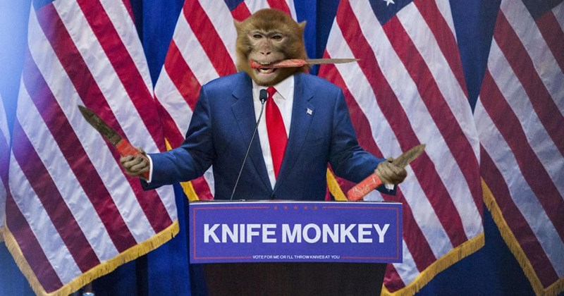Flag of the united states - KNIFE MONKEY VOTE FOR ME OR LL THROW KNIVES AT YOU